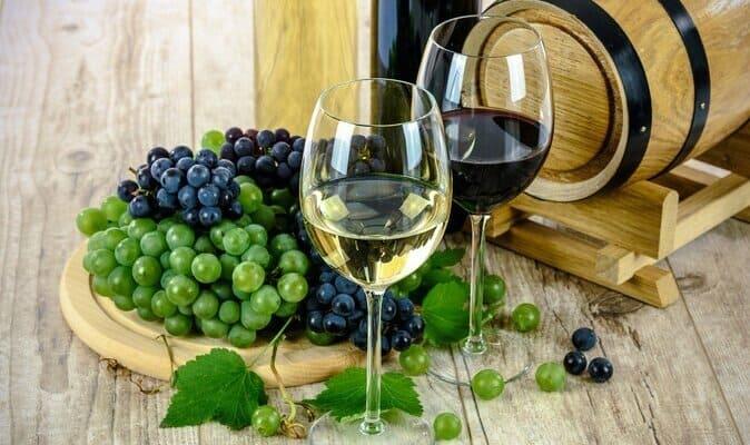 Terroir vin Roussillon
